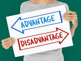 Advantages vs Disadvantages of security screens